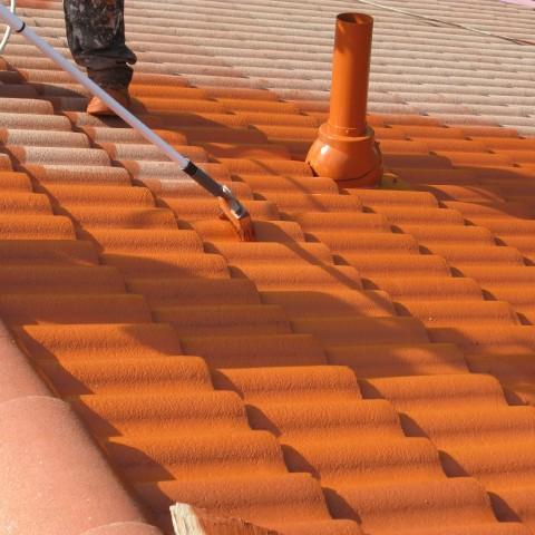 Kilpi Roof Tile Paint