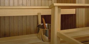 Супи Саунасуоя для защиты бани